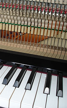 Pianology is the antidote for the out of tune piano
